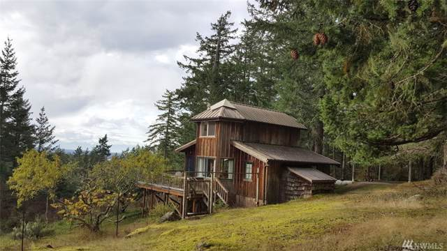 652 Hurricane Hill Rd, Orcas Island, WA 98280 (#1527455) :: The Kendra Todd Group at Keller Williams
