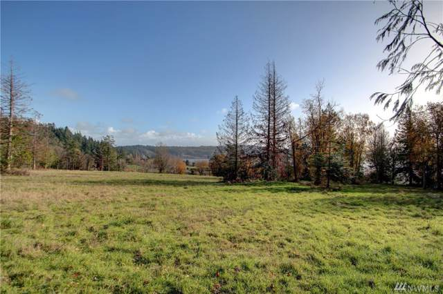 5619 Campbell Lake Road, Anacortes, WA 98221 (#1528138) :: Better Properties Lacey