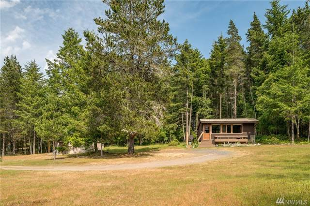 611 Shark Reef Rd, Lopez Island, WA 98261 (#1528317) :: Record Real Estate