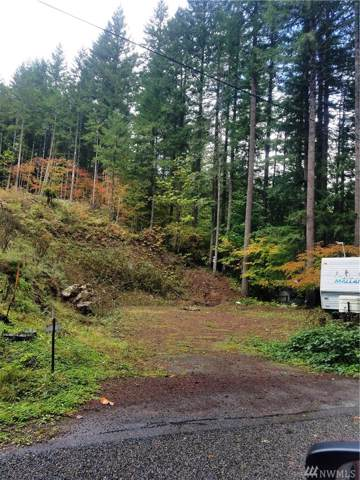 0 Richer Dr, Packwood, WA 98361 (#1528758) :: Chris Cross Real Estate Group