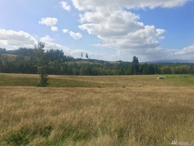 1-lot B Penning Rd, Chehalis, WA 98532 (#1529304) :: Northern Key Team