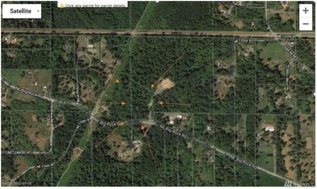 30002 NE Big Rock Rd, Duvall, WA 98019 (#1529407) :: NW Homeseekers
