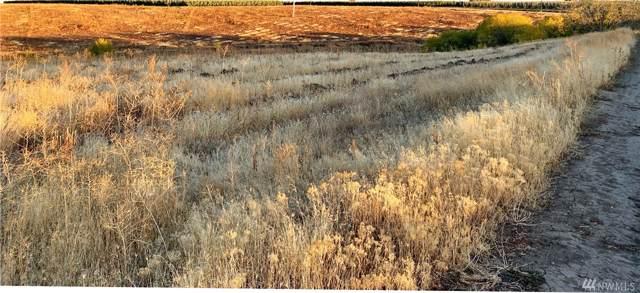 0-NNA Douglas Rd, Yakima, WA 98908 (#1529444) :: Center Point Realty LLC