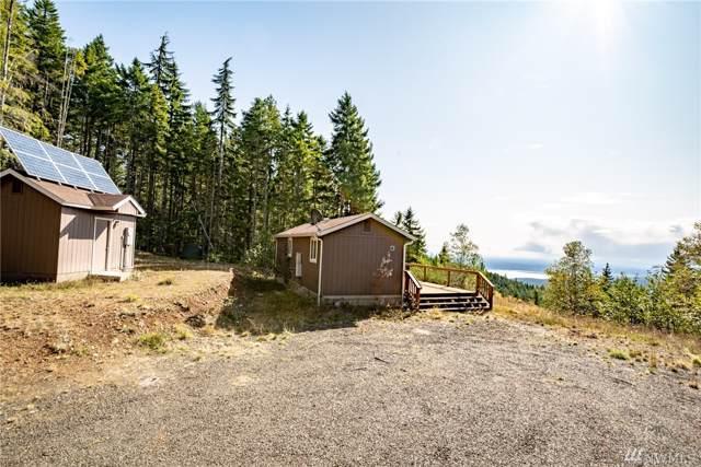 2351 N Dow Mountain Rd, Hoodsport, WA 98548 (#1529672) :: Chris Cross Real Estate Group