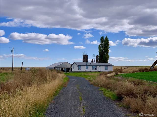 32800 State Route 21 N, Wilbur, WA 99185 (#1529674) :: Lucas Pinto Real Estate Group