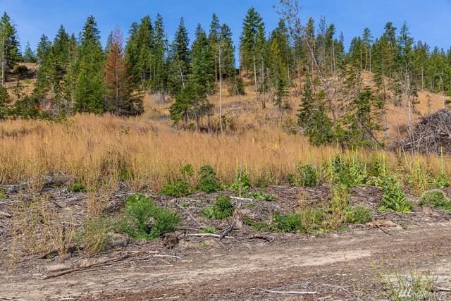 0 Dry Creek Rd Lot 2, Leavenworth, WA 98826 (#1530133) :: Liv Real Estate Group