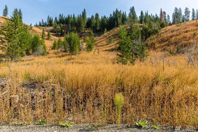 0 Dry Creek Rd Lot 3, Leavenworth, WA 98826 (#1530140) :: Liv Real Estate Group