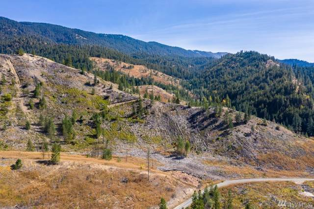0 Dry Creek Rd Lot 8, Leavenworth, WA 98826 (#1530178) :: Liv Real Estate Group