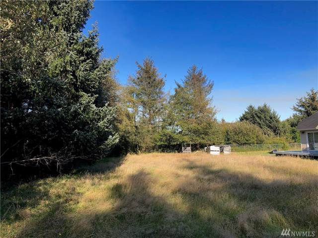Ocean Shores, WA 98569 :: Chris Cross Real Estate Group