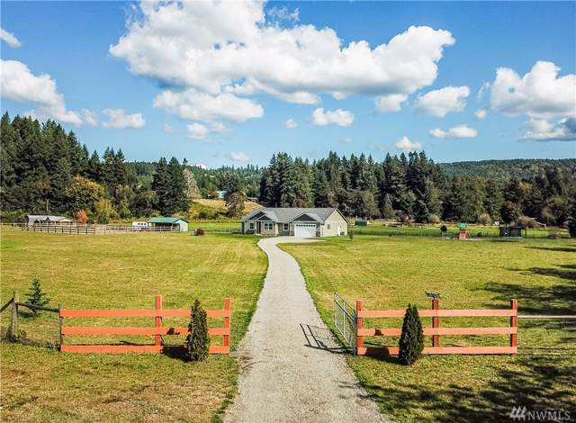 17440 SE Crowder Rd SE, Tenino, WA 98589 (#1530590) :: Pacific Partners @ Greene Realty