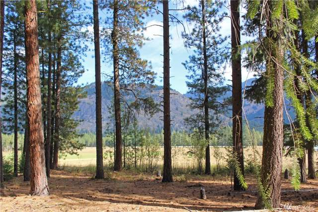 3 Alpine Valley Lot 3&4, Mazama, WA 98833 (#1530743) :: Pacific Partners @ Greene Realty