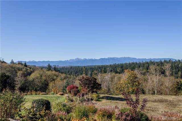 151 Mt Christie Ct, Port Ludlow, WA 98365 (#1530925) :: Better Homes and Gardens Real Estate McKenzie Group