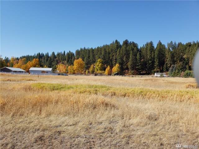0 Highway 970, Cle Elum, WA 98922 (MLS #1530978) :: Nick McLean Real Estate Group