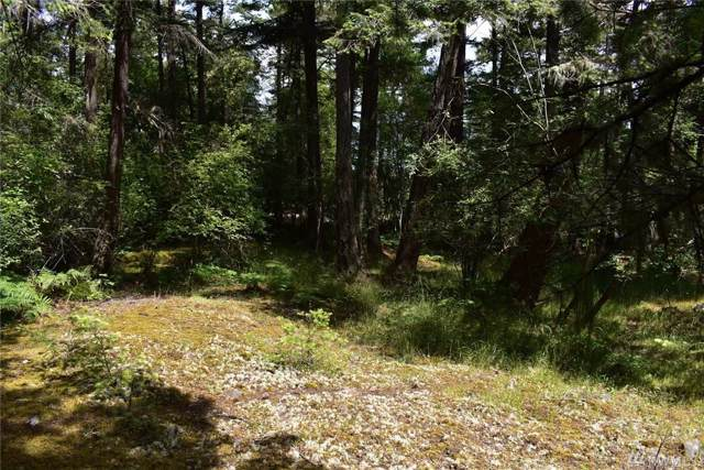 0-xxx Vista Wy, San Juan Island, WA 98250 (#1531769) :: Commencement Bay Brokers