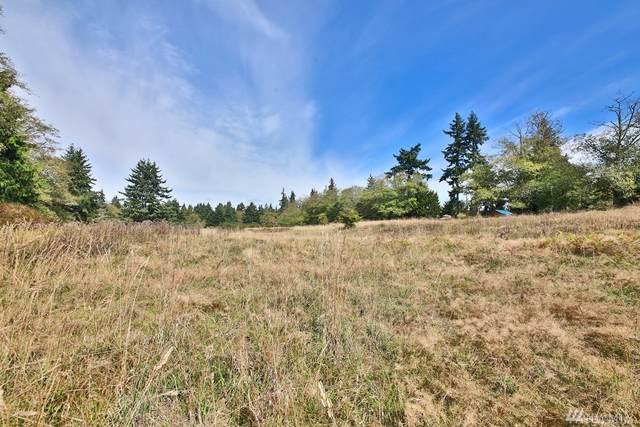 0-Lot 6 Wilkinson Rd, Langley, WA 98260 (#1532504) :: Canterwood Real Estate Team