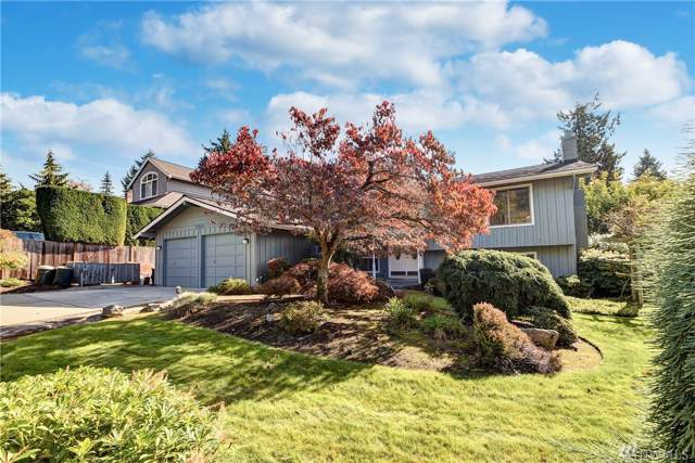 10807 NE 19th Place, Bellevue, WA 98004 (#1532512) :: Costello Team