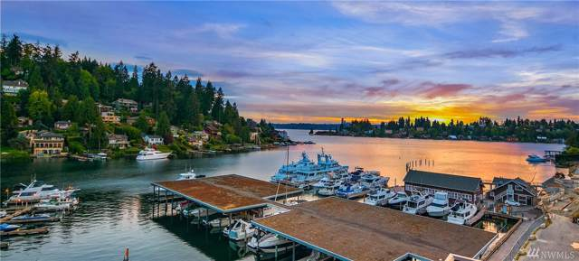 9951 Lake Washington Blvd NE #32, Bellevue, WA 98004 (#1532515) :: Costello Team