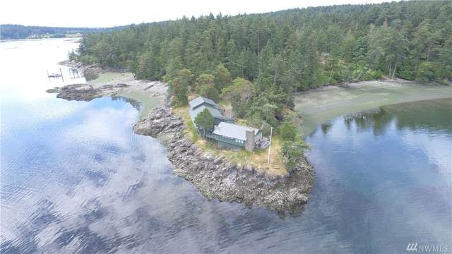 140 Runnymede Lane, Shaw Island, WA 98286 (#1532898) :: Priority One Realty Inc.