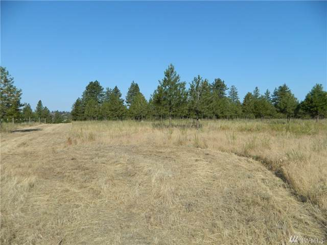 111 Tbd Fancher Dam Rd, Tonasket, WA 98855 (#1533195) :: Ben Kinney Real Estate Team