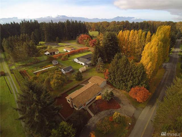 11 Starry Rd, Sequim, WA 98382 (#1533321) :: Real Estate Solutions Group