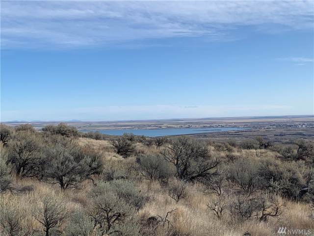 0 40 Acres Recreational Land, Coulee City, WA 99115 (#1533386) :: Capstone Ventures Inc