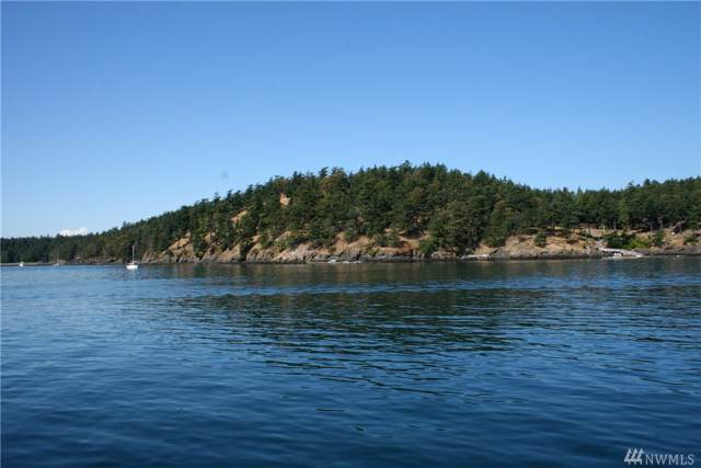 7 Roche Harbor Shore, Henry Island, WA 98250 (#1533829) :: The Kendra Todd Group at Keller Williams