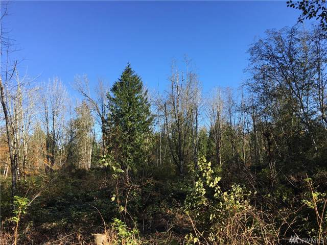 18-LOT 18 NE Country Woods Lane, Kingston, WA 98346 (#1534486) :: The Kendra Todd Group at Keller Williams