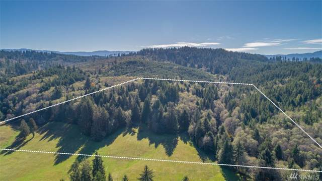0 Mill Creek Rd, Raymond, WA 98577 (#1534496) :: Hauer Home Team