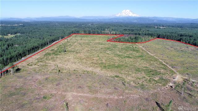 777 Hwy 702, Eatonville, WA 98328 (#1534635) :: Crutcher Dennis - My Puget Sound Homes