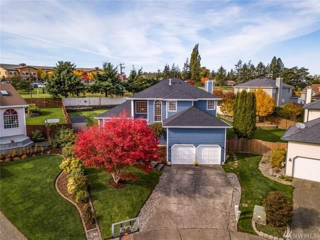 6171 Grouse Cir, Ferndale, WA 98248 (#1534702) :: Ben Kinney Real Estate Team