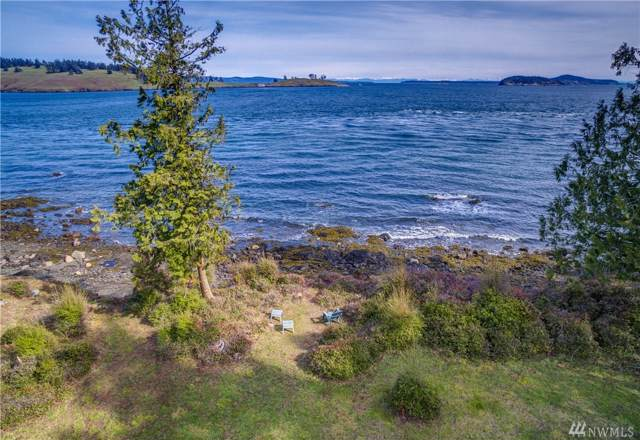7144 San Juan Drive Rd, Friday Harbor, WA 98250 (#1535016) :: Alchemy Real Estate
