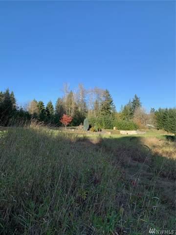 67 Hicklin Rd, Elma, WA 98541 (#1535032) :: Ben Kinney Real Estate Team