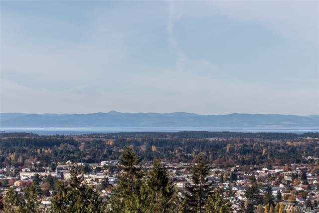 523 Fox Hollow Rd, Sequim, WA 98382 (#1535057) :: Record Real Estate