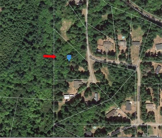 142 E Leffler Loop Rd, Grapeview, WA 98546 (#1535354) :: Lucas Pinto Real Estate Group