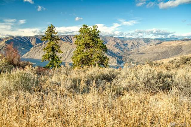 0 Ridgeview Lot C, Orondo, WA 98843 (MLS #1535931) :: Nick McLean Real Estate Group