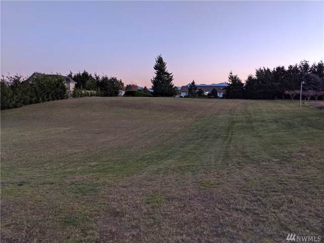 9999 Klahhane Rd, Sequim, WA 98382 (#1537373) :: Record Real Estate