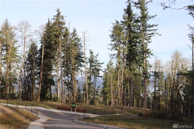 17845-'Lot 1' SE Cougar Mountain Dr, Bellevue, WA 98006 (#1537484) :: NW Home Experts