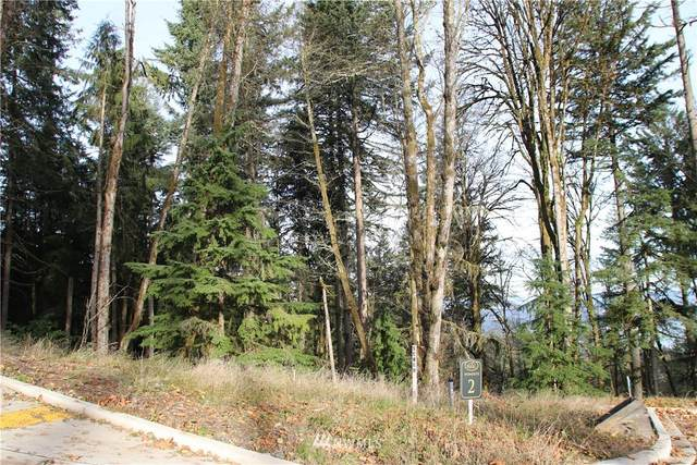 17845 SE Cougar Mountain Drive Lot 2, Bellevue, WA 98006 (#1537745) :: TRI STAR Team | RE/MAX NW