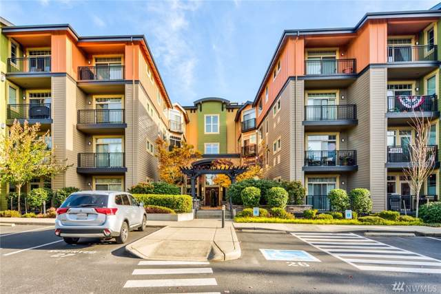15700 116th Ave NE #205, Bothell, WA 98011 (#1538049) :: Record Real Estate