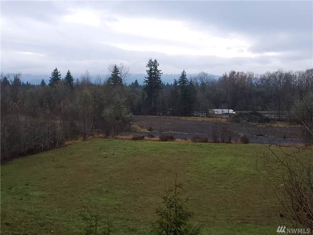 125 Hill Creek Rd, Toledo, WA 98591 (#1538575) :: Ben Kinney Real Estate Team