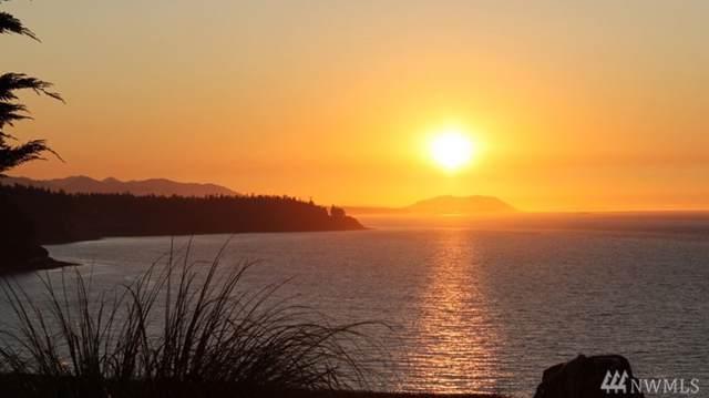 186 Heron Lane, Friday Harbor, WA 98250 (#1538934) :: KW North Seattle