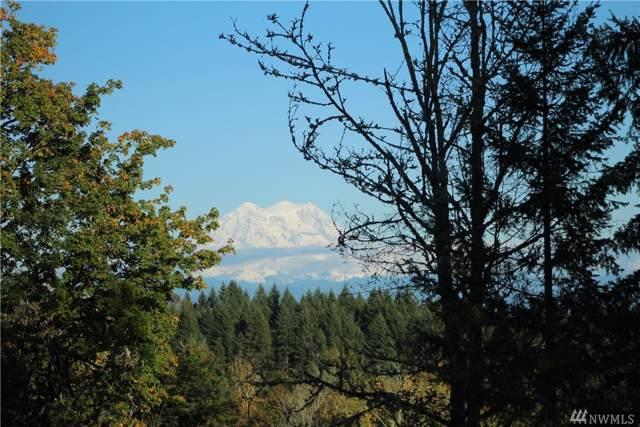 14401 Algyer Rd SE, Rainier, WA 98576 (#1539145) :: KW North Seattle