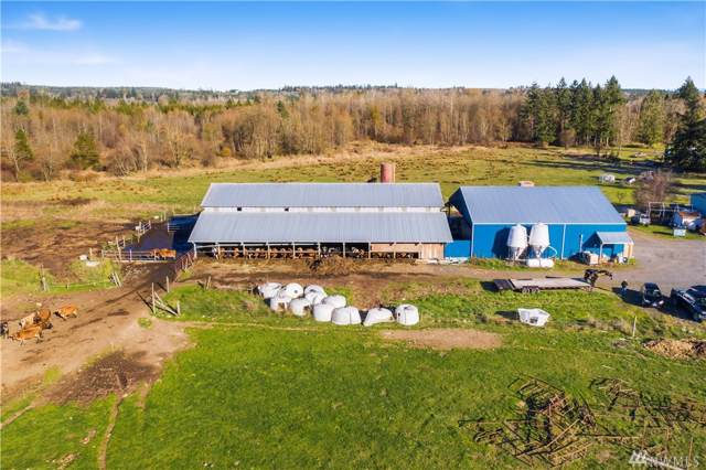 232 Allison Rd, Ethel, WA 98542 (#1539424) :: Record Real Estate