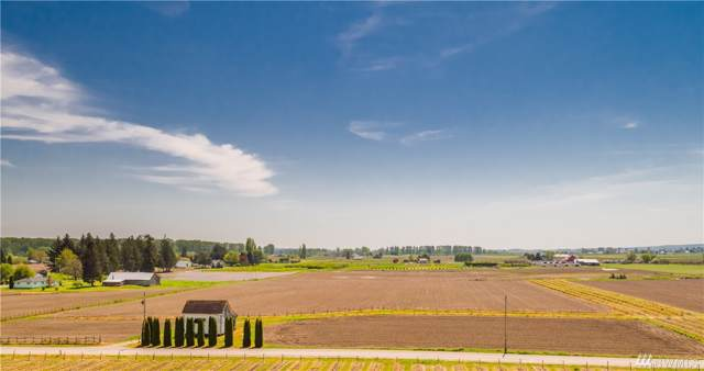 16648 Jungquist Rd, Mount Vernon, WA 98273 (#1539620) :: Ben Kinney Real Estate Team