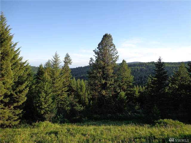 0-TBD Big Goosmus Creek Rd, Curlew, WA 99118 (#1539834) :: Priority One Realty Inc.
