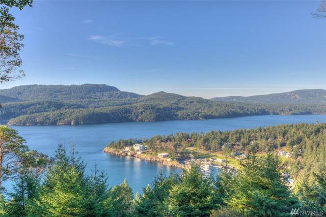 277 Geiser's Wy, Orcas Island, WA 98245 (#1539955) :: Chris Cross Real Estate Group