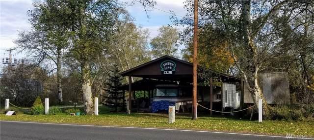 3018 State Rt 105, Grayland, WA 98547 (#1539999) :: Mosaic Home Group