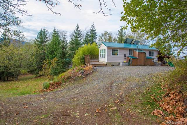 0 Reese Hill Rd, Sumas, WA 98295 (#1540482) :: Crutcher Dennis - My Puget Sound Homes