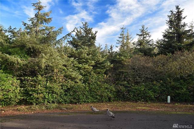 672 Balboa Ct NE, Ocean Shores, WA 98569 (#1540528) :: Priority One Realty Inc.