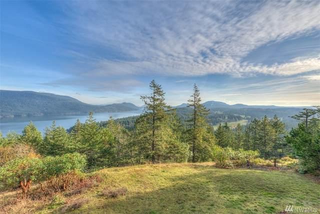 404 Blanc Rd, Orcas Island, WA 98245 (#1540833) :: Northwest Home Team Realty, LLC
